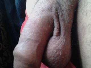 natural penis and balls