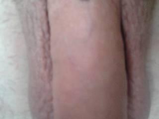 piercing pierced cock balls piercings hafada pubis pubic dick