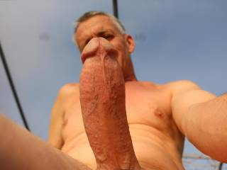 hot house cock