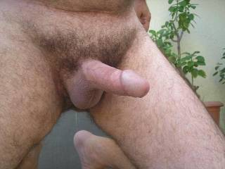 I wanna see and taste some cum of you
