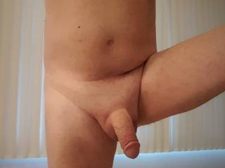 Another view of my semi-erect cock
