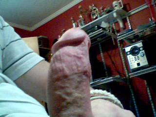 Another picture of my dick ;) wants some fun