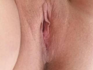 I love pussy don't you?