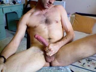 now that look like a good riding cock