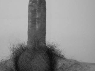 Straight Dick, Big Balls, Hairy And... So Vintage In Black & White!