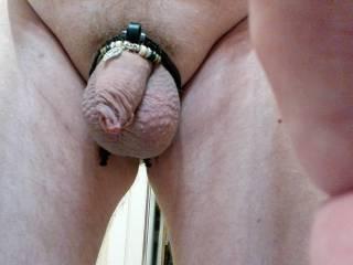 Huge balls small dick