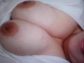 Seriously great tits, love to have them in my face.