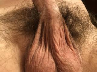 My fully erect hairy cock and balls