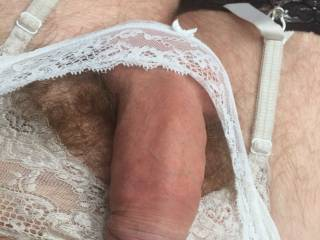 hard pantied cock to use...