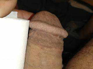 My cock getting hard thinking of some pussy on hear