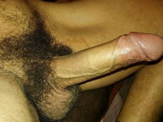hairy big dick cock