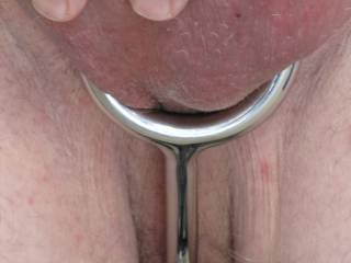 My asslock with the ring around my cock and balls and the rod going between my legs and then up my arse.  Wonderful and heavy to wear.  The end of the rod has a 30mm solid stainless steel ball on it.