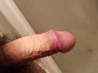 My half hard cock before shaving it bald