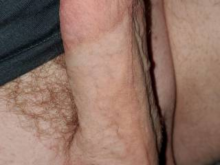 Impressive trimmed erect Large Cut Hard penis cock dick and balls