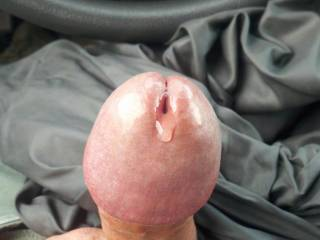 Your big cockhead looks great with precum oozing out your slit.