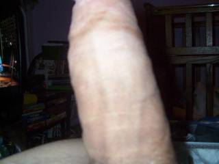 boyfriend not fully hard yet...who wants to help him get all the way up