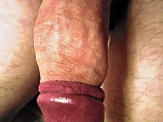 Erect cock tight retracted