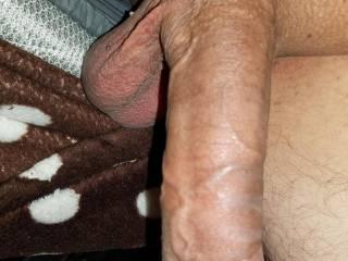 Fat brown cock