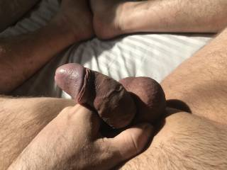 My Cock and Balls with Cock Ring! Had a reminder from a fellow Zoiger and thought I'd get my cock ring out and have a play!! From soft to hard felt so good throbbing for a tight pussy! Any tight pussy wanna feel me throbbing and swollen?? In the sunligh