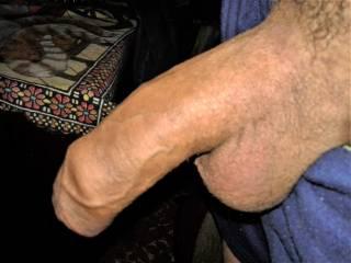 uncut shaved penis