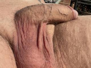My balls are looking full of my spunk Do you think they look full and need a friend to empty  them for me