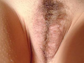 want to see my wife's pussy?