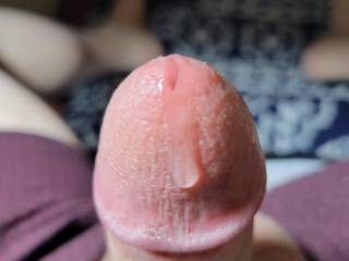 Been thinking about my FAVORITE SeXy Lady...that HOOSIER Girl with the Juicy Booty 🖐🍑, she never fails to get me hard.  Spent over an hour 👀 looking at her great pics and vids, with the precum flowing the whole time.