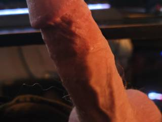 My hard cock ready for your mouth