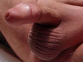I stroked hubby's cock until it was nice and hard...then I pulled out the camera so I could share with you!