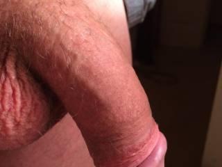 Sort of big, mostly a fat cock