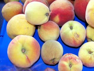 hmmm I do love peaches and I'm sure I could lengthen yours with a little nibble...(Mrs)