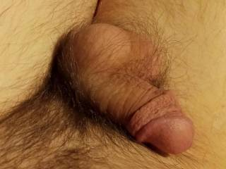 Taking photos of my small soft cock for you ;)