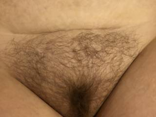 My wife's hairy pussy