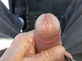 Riding around edging, little bit of precum dripping. It tasted great!