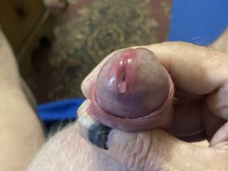 I was getting so aroused looking at pics of sexy women my pre-cum started oozing. Best lubricant in the world foe jerking off! Would you like to taste some of it?