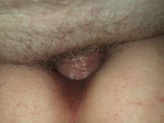 burying my hard cock in her tight wet ass