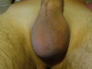 After grooming photo, fresh, clean shaven cock and balls