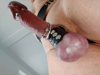 A trussed cock is one that needs milking. Would you do it for me whilst I watch and play with my pussy