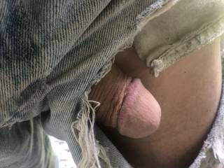 another view of my dick that fell out of my ripped shorts