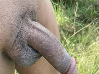 Managed to find a clearing off the public path on the way to the fort, I could get my trousers down and get the cock out and have little play, getting a bit bigger