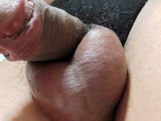 Black cotton panties and penis with ball-bag.