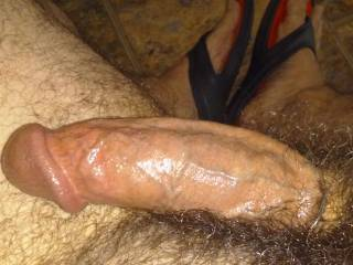 My throbbing hard erect cock ready for stroking