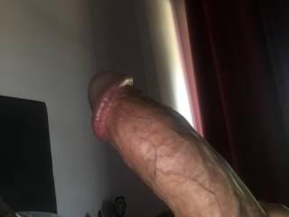 Pic of hubby's nice cock !!!!