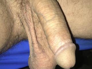 Just showing my limp cock with my balls hang n' low