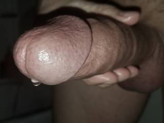 A precum-leaking mushroom cock head for your carnal desires.