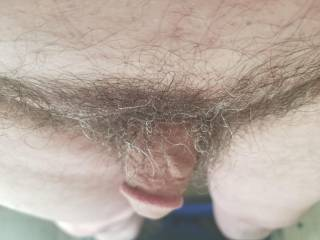 Looking for a place to put my dick into and fuck hard looking to do lots of fucking and sucking