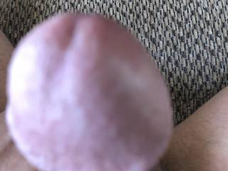 Close up of the head of my hard cock what you think?