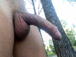 selfie dick in the garden