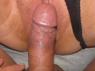 Very hot seeing that nice, thick, hard cock rubbing that beautiful pussy.  Very hot pic.