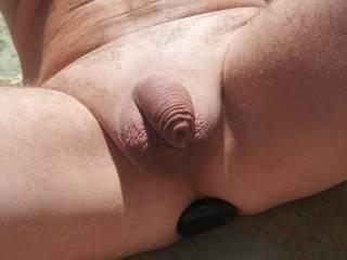 mmmmmmmmmmmm love to suck your shaved cock